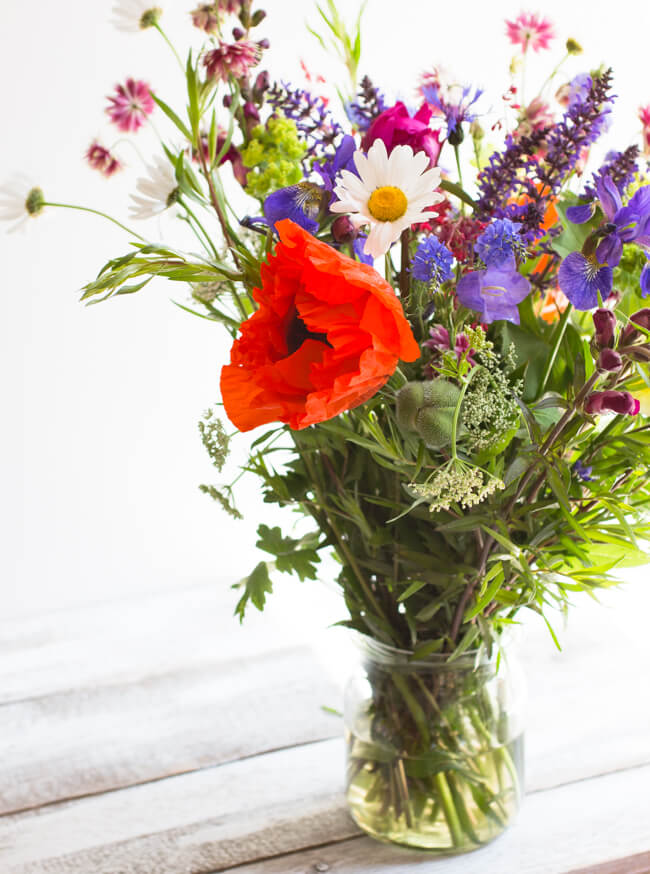 June flowers-4