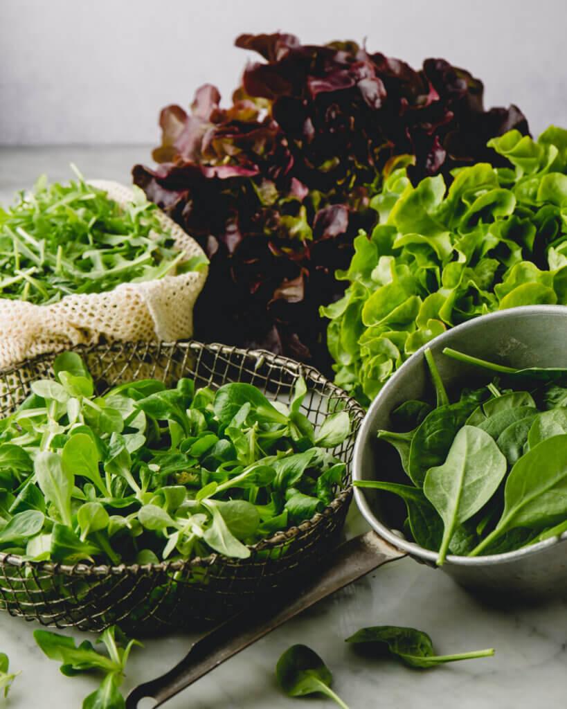 Frisch gewaschene grüne Salate im Sieb